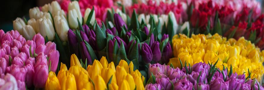 bouquet magnifique